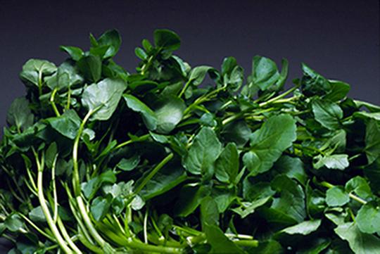 Bạn có biết tàn nhang có thể được chữa trị bằng các loại rau?