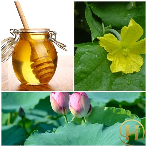 """""""Siêu dễ, siêu rẻ"""" với 3 cách trị nám tàn nhang bằng mật ong tại nhà 12"""