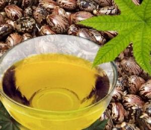 Dùng thầu dầu – Mẹo chữa tàn nhang, bạn đã thử?