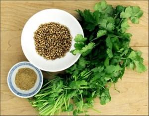 Mẹo dân gian – Trị tàn nhang bằng rau mùi đơn giản hiệu quả