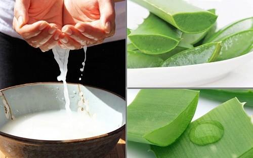 Trị tàn nhang bằng nha đam nước vo gạo hiệu quả