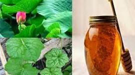 2 cách làm giảm bớt tàn nhang trên mặt bằng thảo dược tại nhà