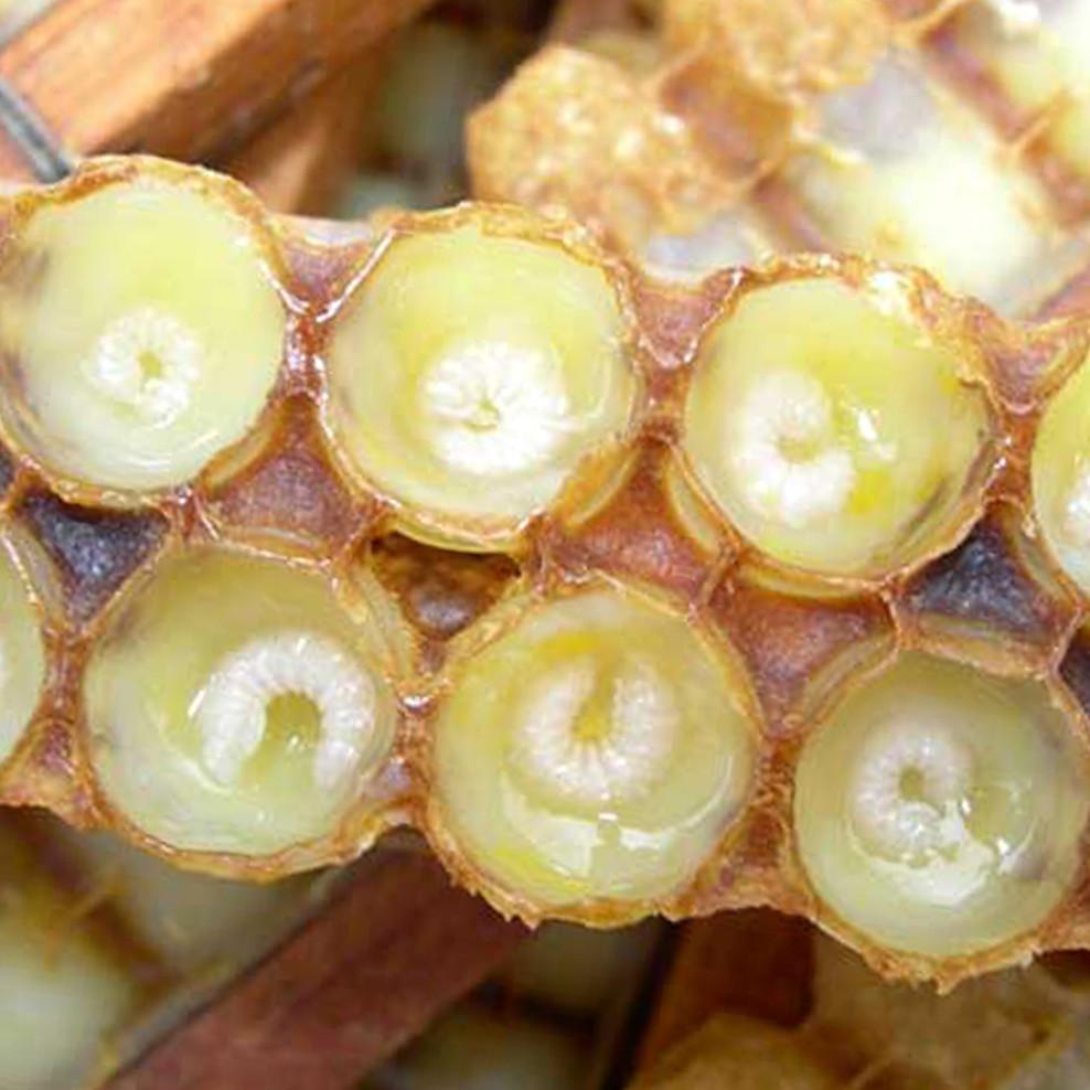 sữa ong chúa chữa trị tàn nhang hiệu quả